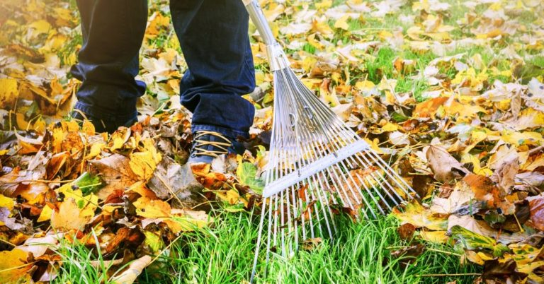 12 Ways I'm Going to Save Money This Fall