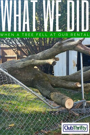Being a landlord isn't all rainbows and puppies. Sometimes, you have to fix things. Here's what we did with the giant tree that fell at our rental house.