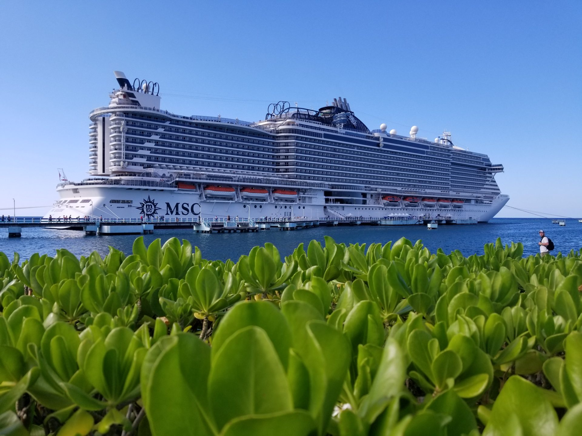 Photo of the MSC Seaside