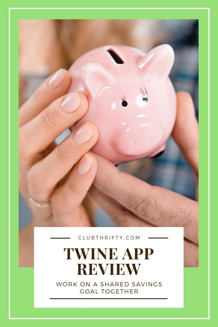 Twine App Review Pin - picture of two people holding piggy bank