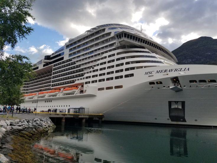 Photo of the MSC Meraviglia at port
