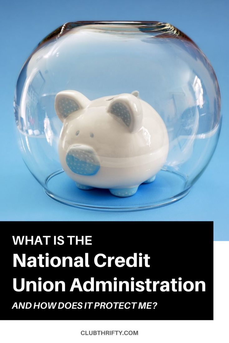 What is the NCUA Pin - picture of white piggy bank inside upside down fish bowl