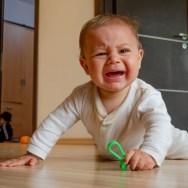 Ce înseamnă şi cum se educă disciplina la vârsta de 1 an? Explică, arată, explică încă o dată