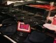 Vandome Merchandise