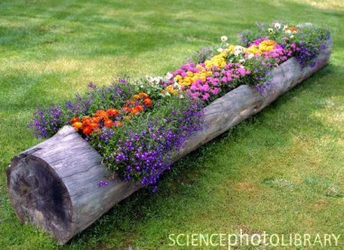 Attractive Diy Logs Ideas For Summer Garden To Try Right Now28
