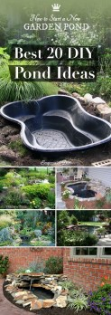 Casual Backyard Ponds Design Ideas For Garden To Try Asap41