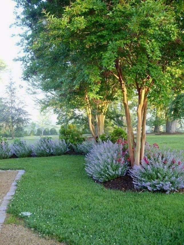 Modern Shade Front Yard Design Ideas For Summer23