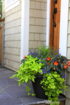 Pretty Planter Design Ideas For Summer Porch To Looks Amazing24