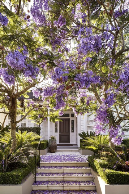 Comfy Flowering Tree Design Ideas For Your Home Yard19