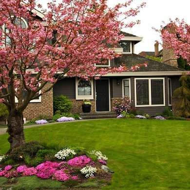Comfy Flowering Tree Design Ideas For Your Home Yard33