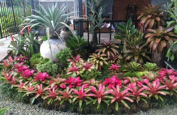 Fascinating Front Yard Landscaping Design Ideas To Try Right Now29