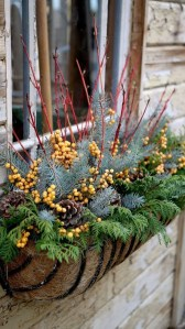 Sophisticated Container Garden Flower Ideas For This Winter To Try02