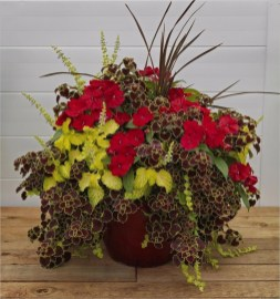 Sophisticated Container Garden Flower Ideas For This Winter To Try10