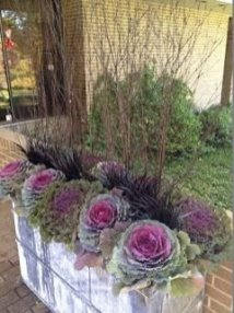 Sophisticated Container Garden Flower Ideas For This Winter To Try23