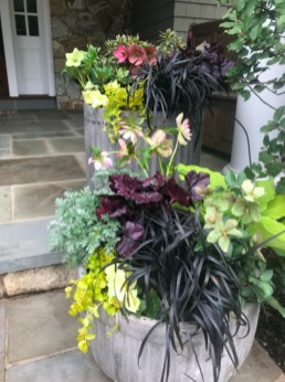 Sophisticated Container Garden Flower Ideas For This Winter To Try26