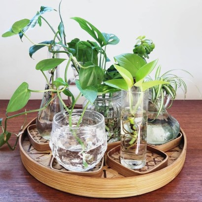 Awesome Indoor Water Garden Design Ideas That Refresh Your Interiors17