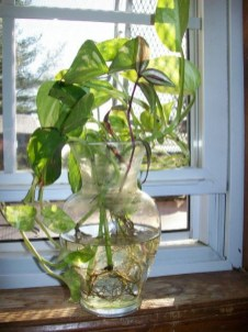 Awesome Indoor Water Garden Design Ideas That Refresh Your Interiors19