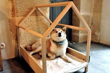 Captivating Plywood Dog House Design Ideas With Fishbone To Insoire You28