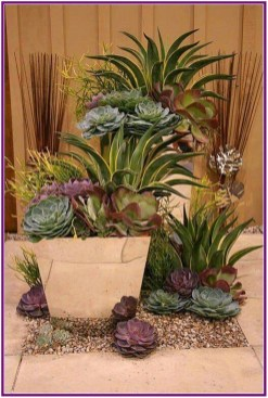 Fascinating Indoor Plants Design Ideas With Desert Atmosphere To Have28