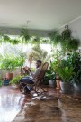 Lovely Indoor Jungle Decor Ideas To Try Asap21