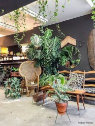 Lovely Indoor Jungle Decor Ideas To Try Asap23