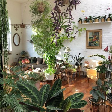 Lovely Indoor Jungle Decor Ideas To Try Asap27