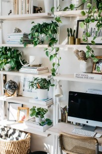 Fascinating Home Office Design Ideas With Beautiful Plants To Try Asap11