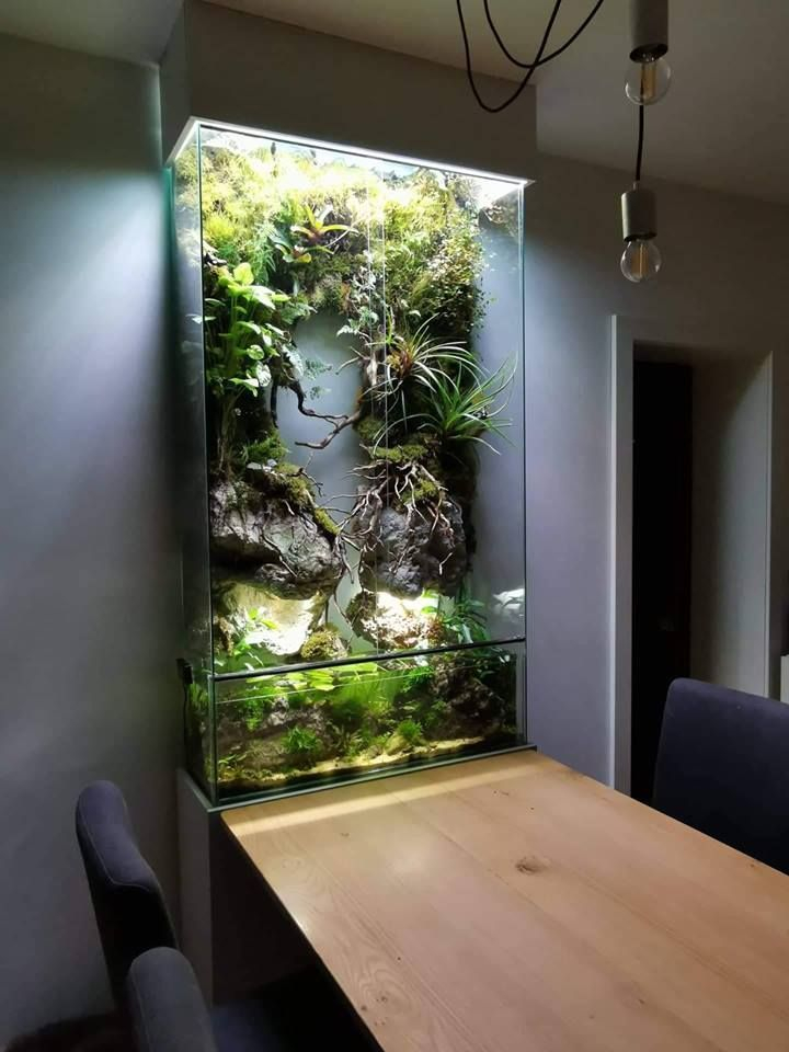 Glamorous Aquariums Design Ideas For Cool Interior Styles To Have01