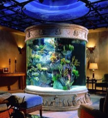 Glamorous Aquariums Design Ideas For Cool Interior Styles To Have25