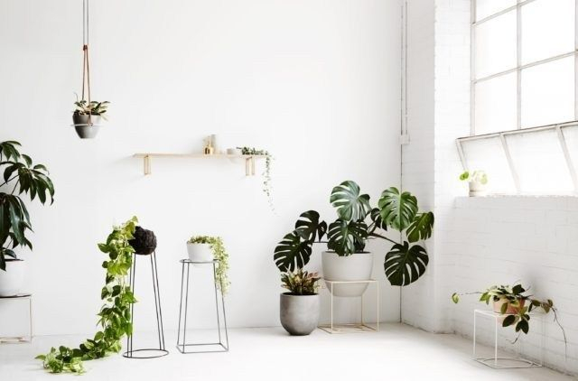 Unusual Indoor Garden Design Ideas With Scandinavian Style To Have18