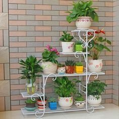 Newest Flower Shelf Design Ideas That Will Amaze You19