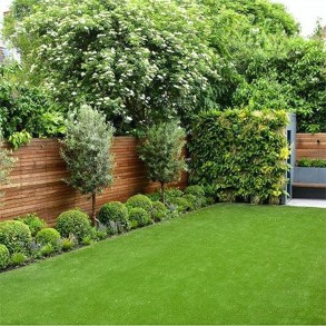 Enchanting Living Fences Design Ideas That Suitable For Your Yard 08
