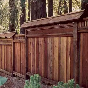 Enchanting Living Fences Design Ideas That Suitable For Your Yard 14