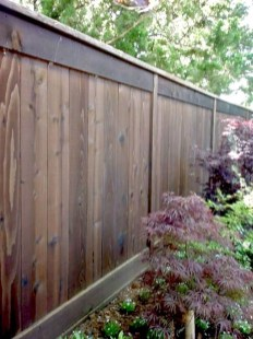 Enchanting Living Fences Design Ideas That Suitable For Your Yard 22