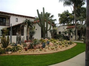 Beautiful Front Yard Cactus Garden Ideas 02