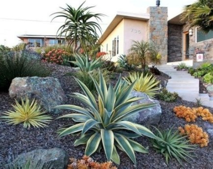 Beautiful Front Yard Cactus Garden Ideas 06