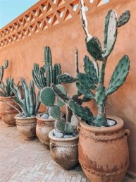 Beautiful Front Yard Cactus Garden Ideas 09