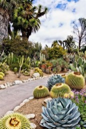 Beautiful Front Yard Cactus Garden Ideas 12