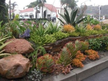 Beautiful Front Yard Cactus Garden Ideas 17