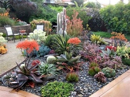 Beautiful Front Yard Cactus Garden Ideas 19