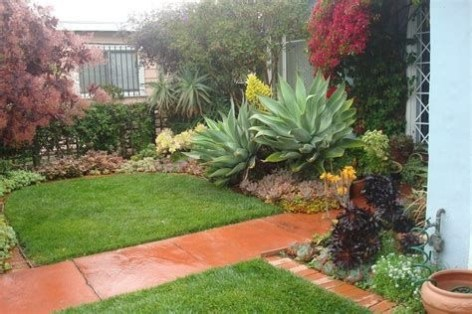 Beautiful Front Yard Cactus Garden Ideas 24