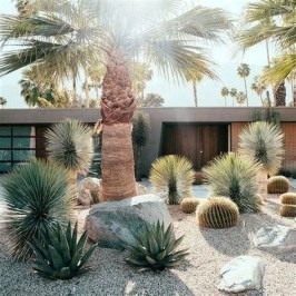 Beautiful Front Yard Cactus Garden Ideas 39