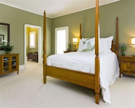 Creative Sage Green Accent Wall Bedroom Ideas 07