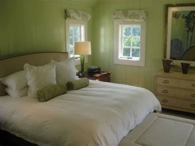 Creative Sage Green Accent Wall Bedroom Ideas 13