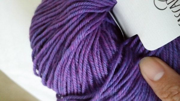 Cascade 220 Superwash in Amethyst Heather