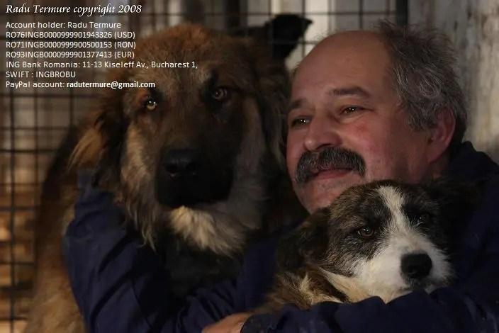 """Fii mosul a 900 de catei"" - eveniment caritabil inedit la Cluj"