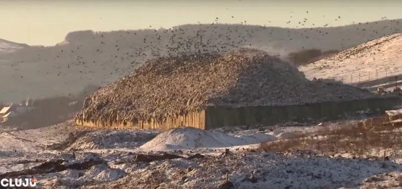 Viata la groapa de gunoi de la Pata Rat | Imagini filmate cu camera ascunsa
