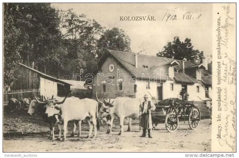 Calea Manastur - anul 1912