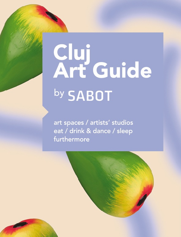 cluj art guide