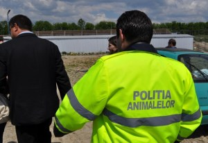 Angajări la Poliţia Animalelor la Cluj